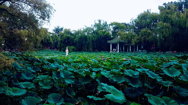 Shenyang Liaoning beiling park